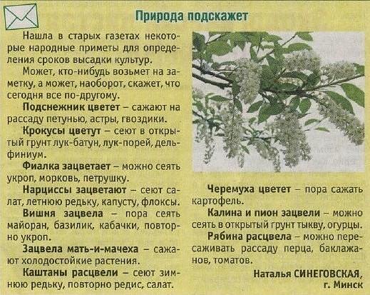 Природные подсказки