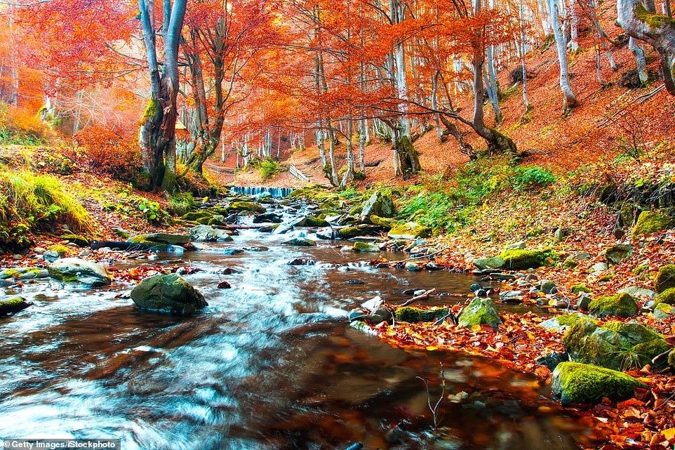 Очей очарованье: самые красивые места для путешествий осенью