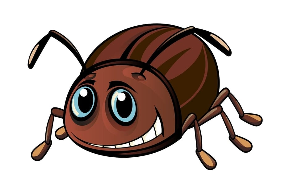 Про жука и педагогику