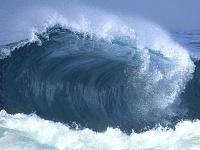 Моря и океаны 36