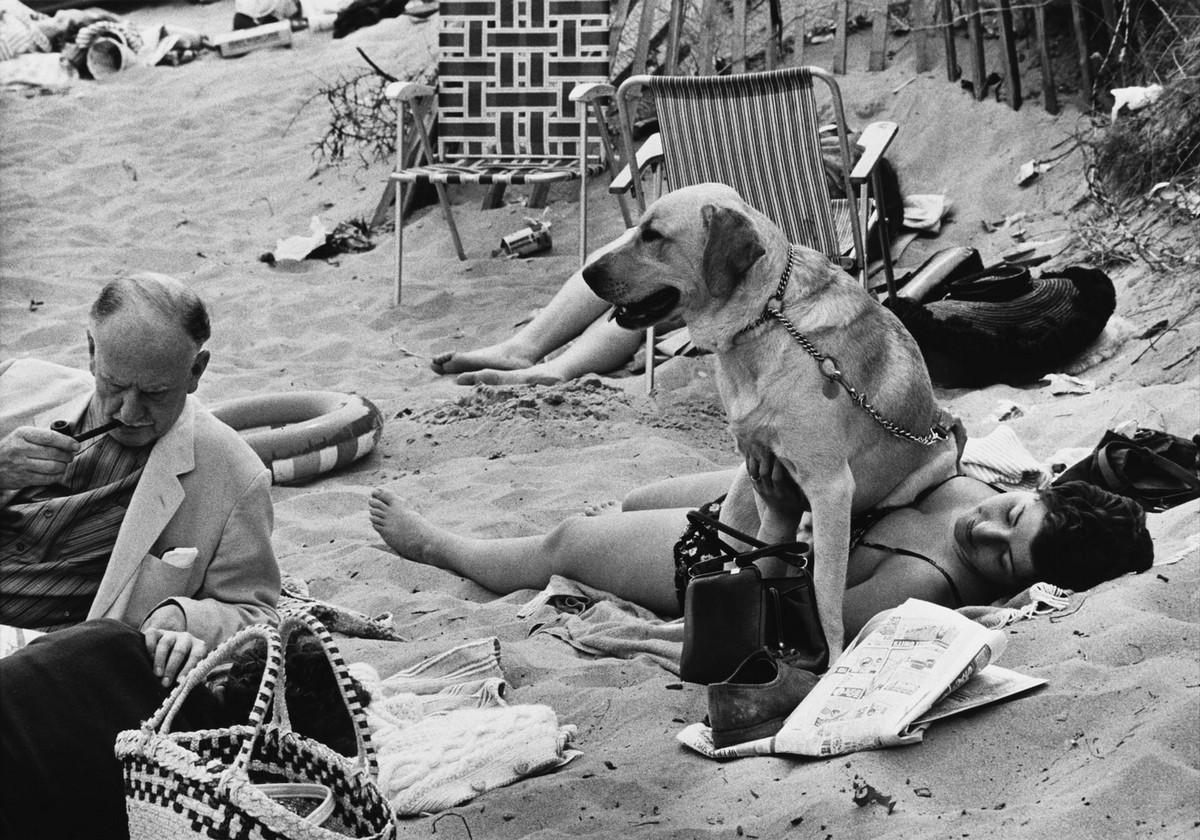 Обаяние трущоб Манчестера в фотографиях Ширли Бейкер 1960-х годов 17