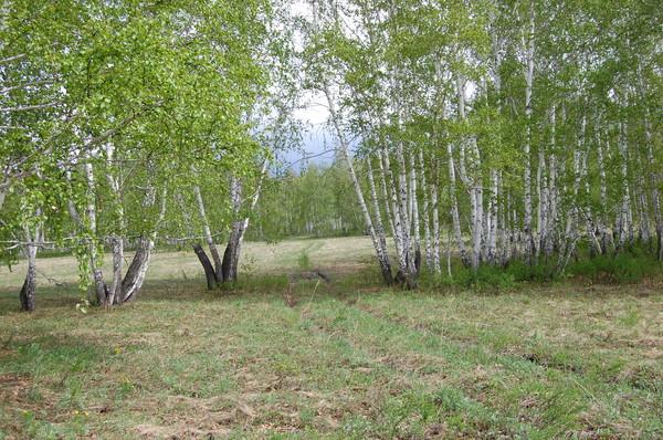 Южный Урал. Водопад Гадельша или бегом за весной.