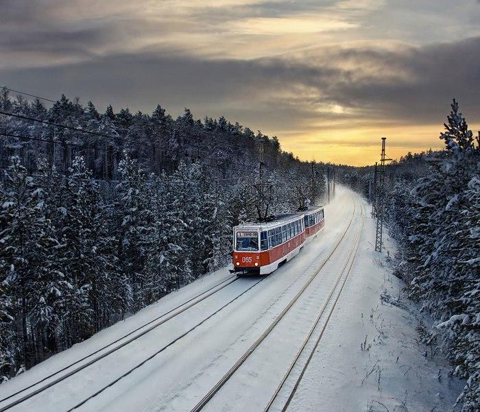 Очень красивое явление — трамвай в тайге