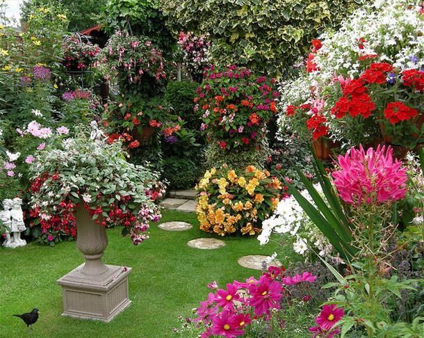 Мой прекрасный сад своими руками 36