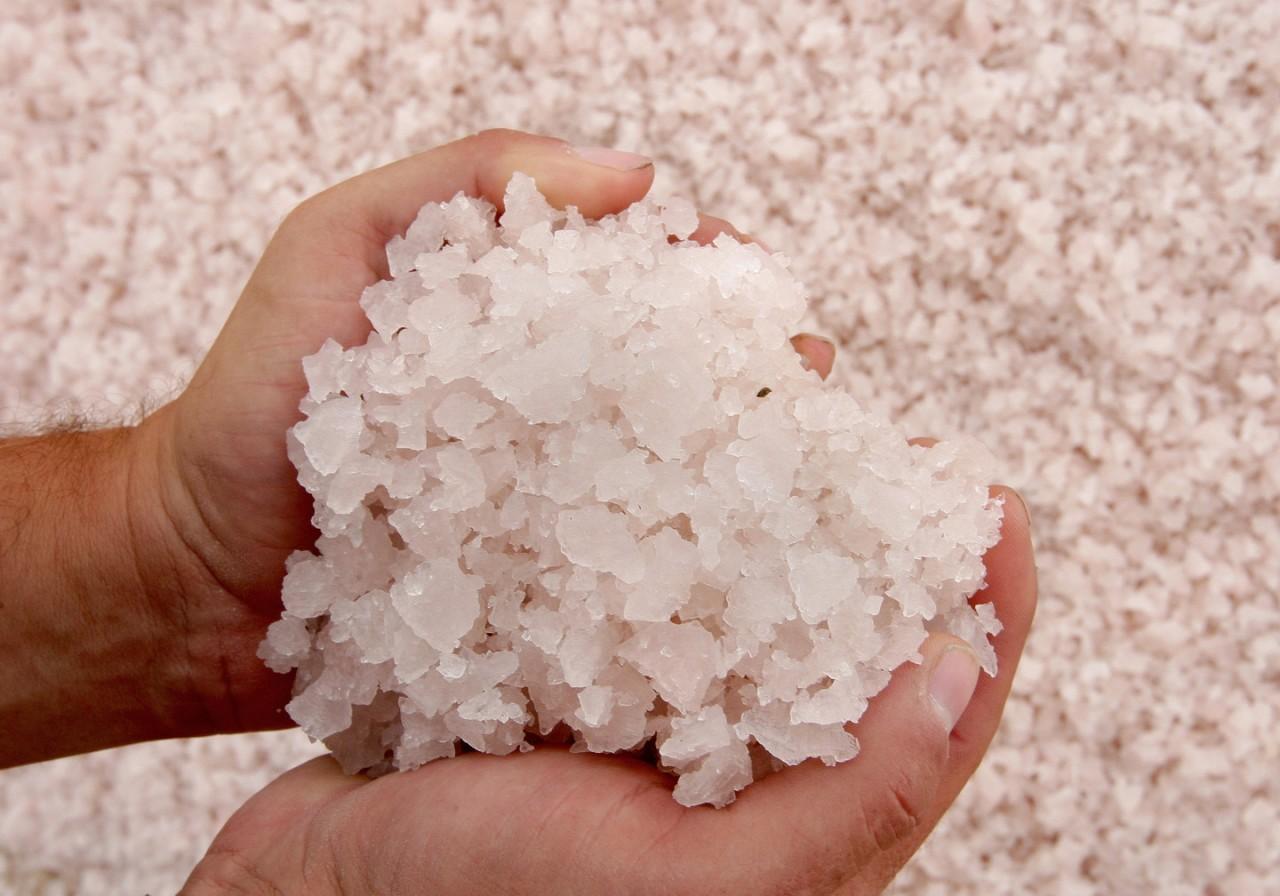 И на капусту и на огурцы: Правительство РФ исключило из санкционного списка соль и морскую воду