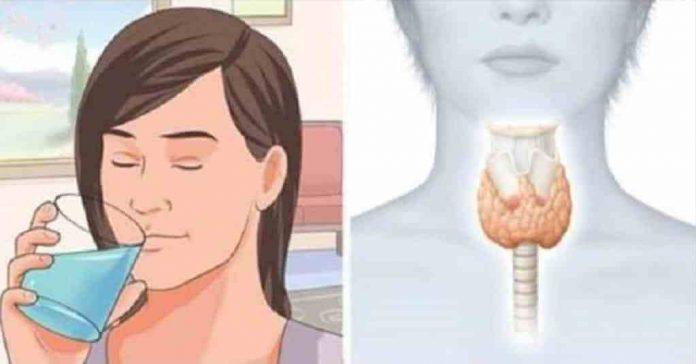 Как восстановить щитовидную железу, чтобы сжигать жир и активировать метаболизм