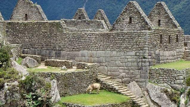 В Перу нашли могилу представ…