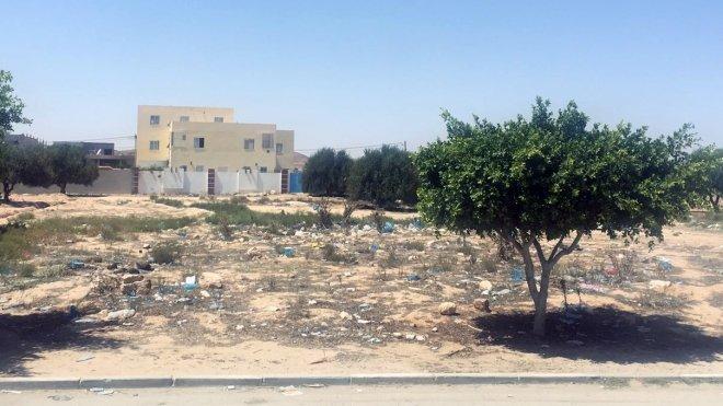 Экономический кризис в Тунис…