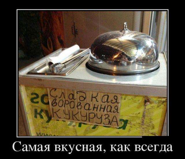 Веселые демотиваторы)