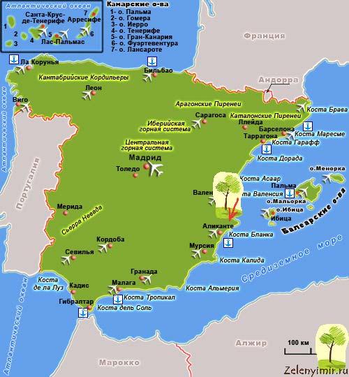 Чарующий пальмовый лес Эльче в Испании - 9