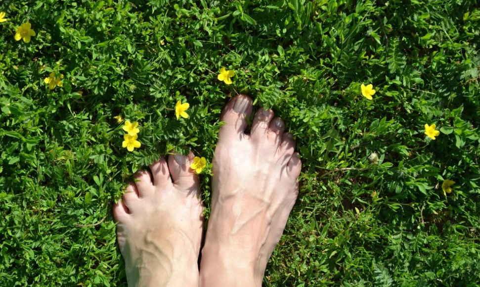 Древние деревенские рецепты лечения утренней росой. Как современные знахари используют росу для исцеления