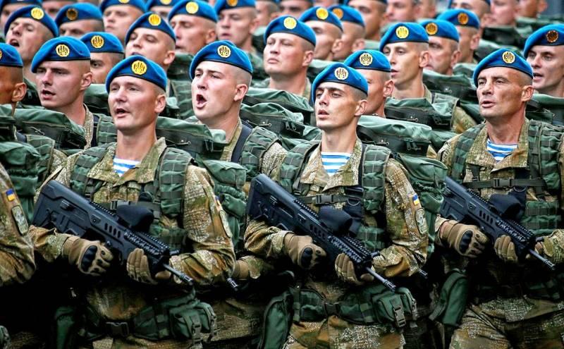Украинская десантура: позор, который не смыть ничем