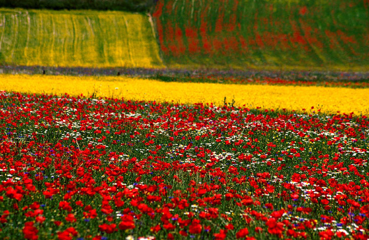Прогулка по разноцветной долине Италии