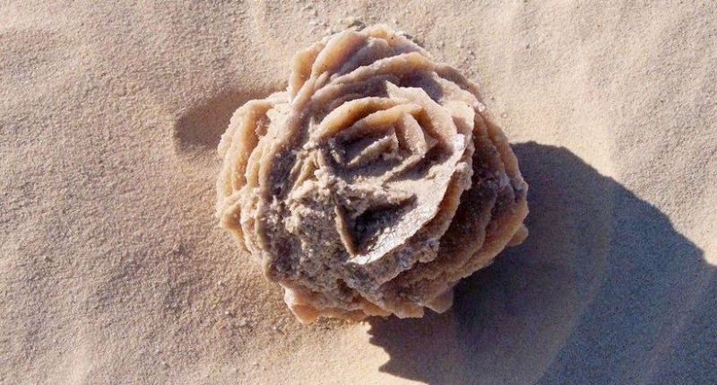 «Розы пустыни»: как в Сахаре…