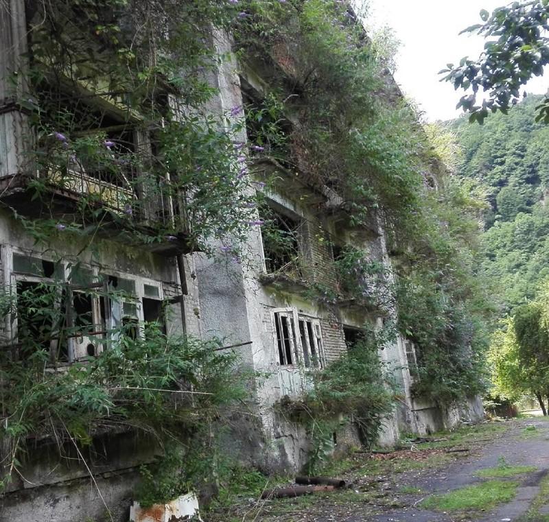 Бывший жилой дом в Ткварчели заброшенное, красиво, мир без людей, природа берет свое, фото, цивилизация