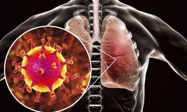Витамины, которые одобрены в качестве лечения коронавируса