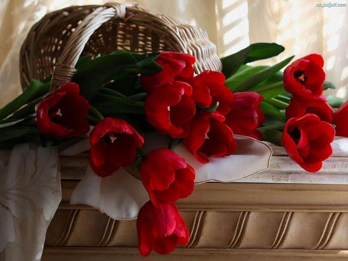 tulipany-koszyk-1 (700x525, 248Kb)