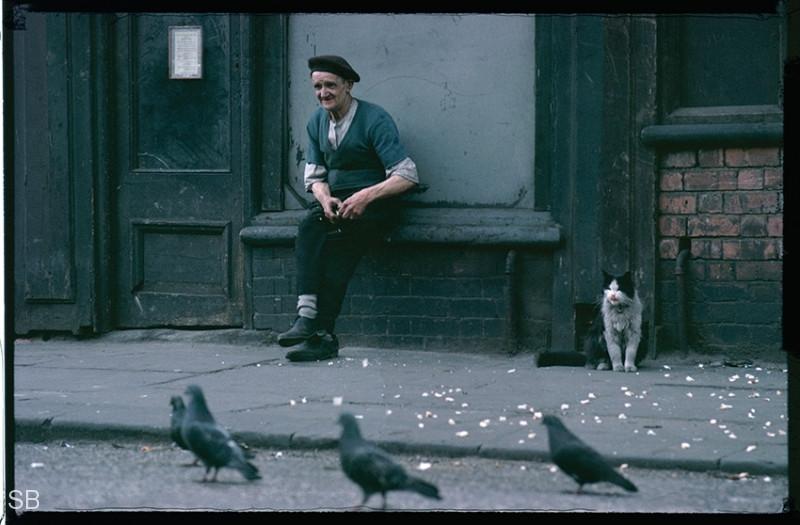 Обаяние трущоб Манчестера в фотографиях Ширли Бейкер 1960-х годов 32