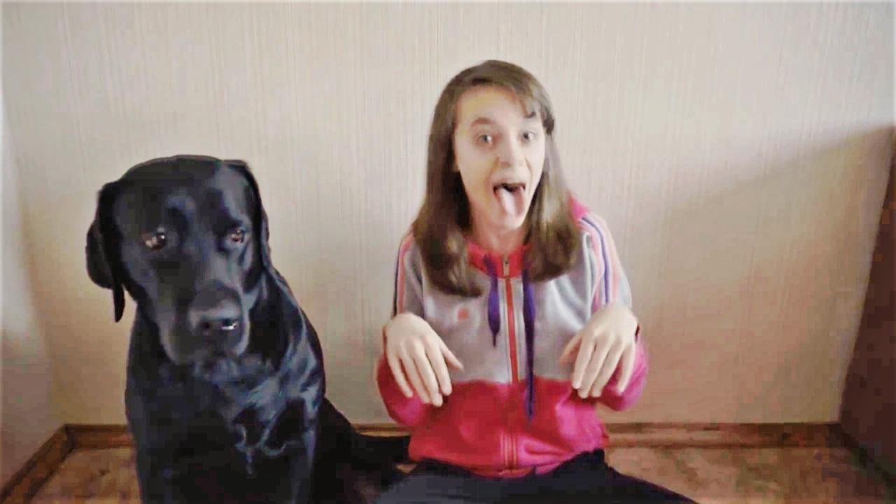 Лучшие Приколы про Собак Сен…