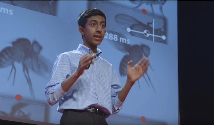 6совсем недетских научных проблем, скоторыми справились подростки (Ивзяли призы отGoogle)