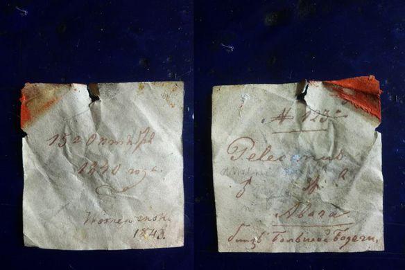 В Киеве нашли 178-летнюю записку в чучеле пеликана
