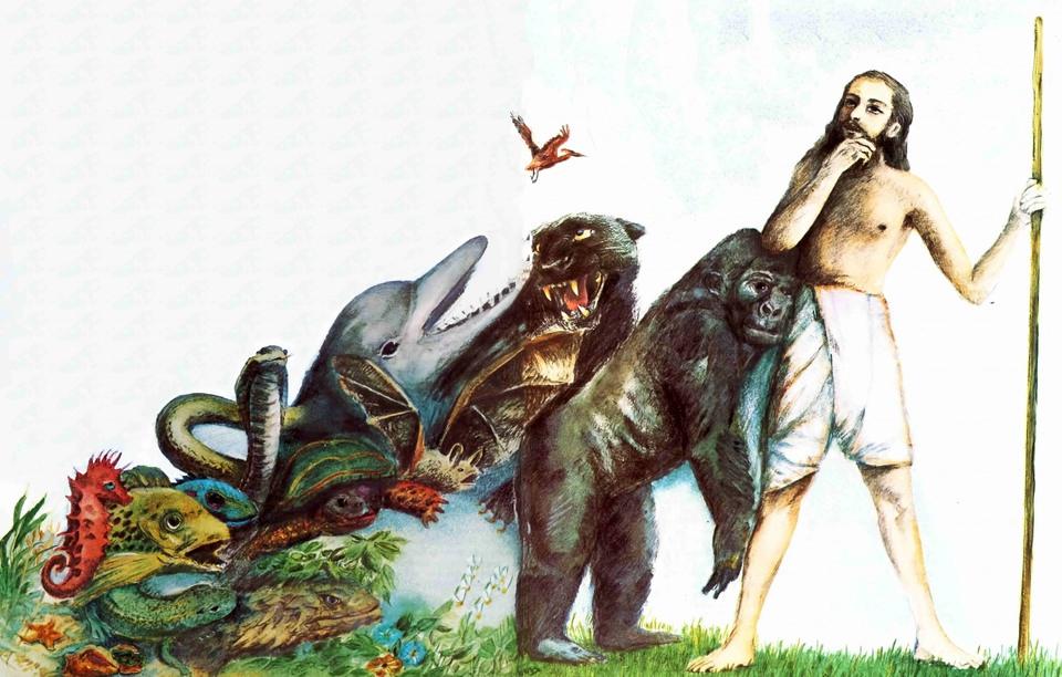 Как боролись с теорией Дарви…