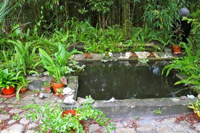 Водоем квадратной формы без водной растительности