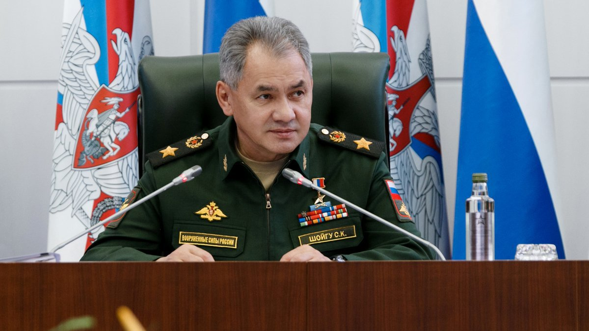 Шойгу: за три года в САР при поддержке России удалось полностью разгромить банды «ИГИЛ»