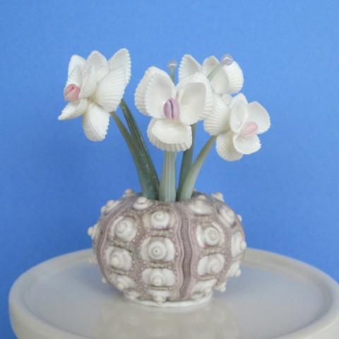 Как сделать цветок из ракушек своими руками 42