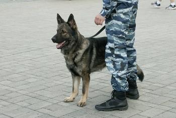 В Ростове уволили отделение полицейских из-за запрещенных средств
