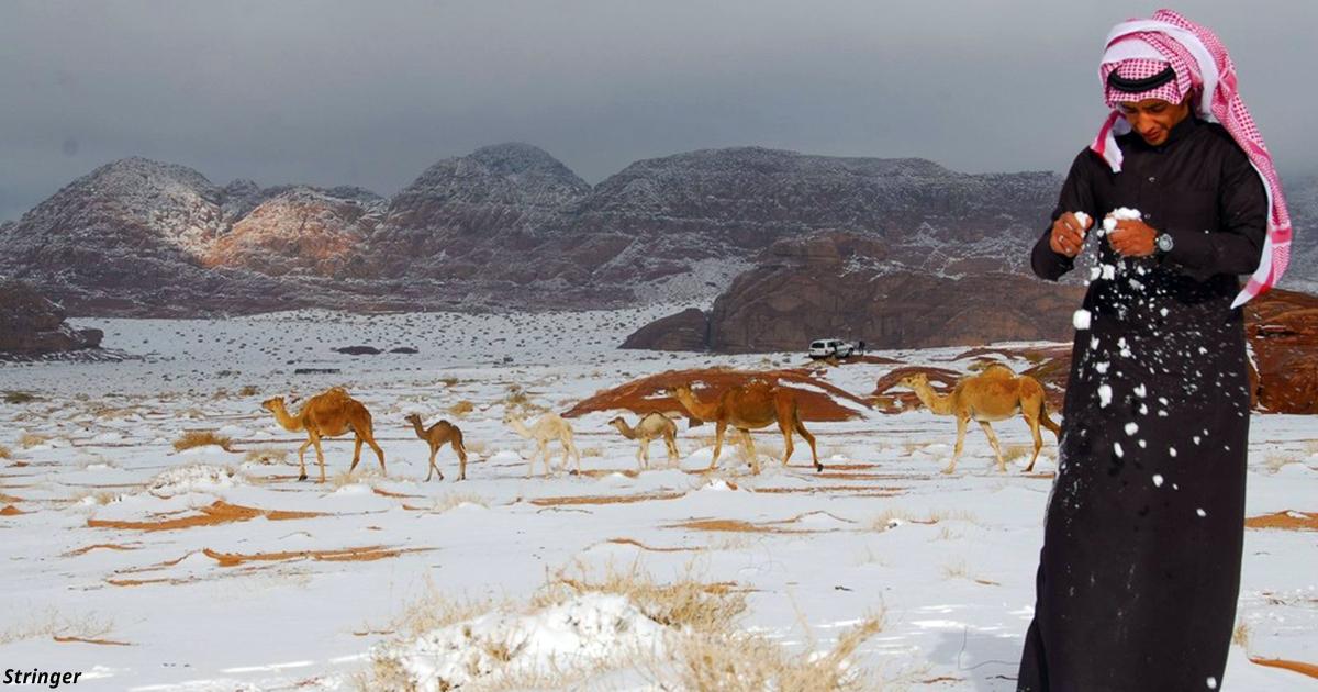 В саудовской пустыне выпал снег. Такого не помнит ни один старожил!