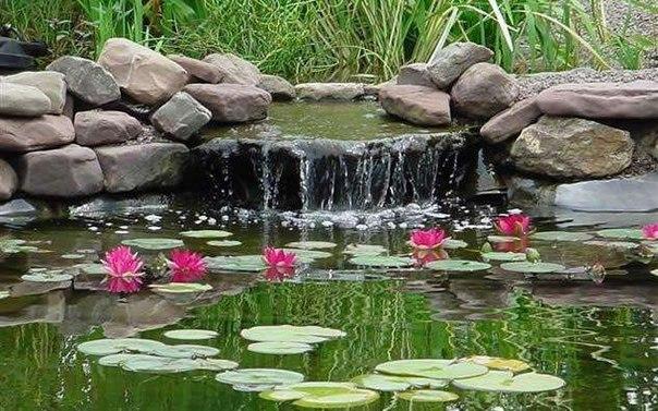 Красивый дачный водоем.