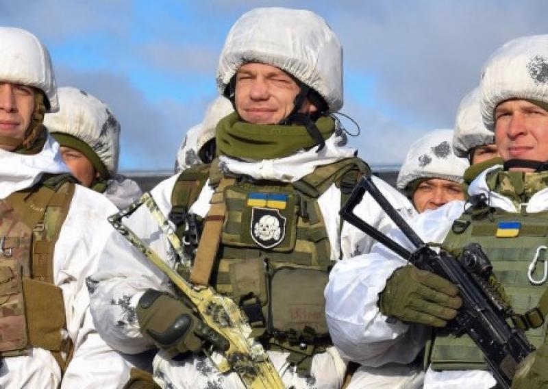 Выставляете нас на посмешище во всем мире: немецкий депутат о поддержке украинских нацистов властями ФРГ