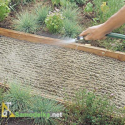дорожка из плитняка своими руками поливаем песок водой