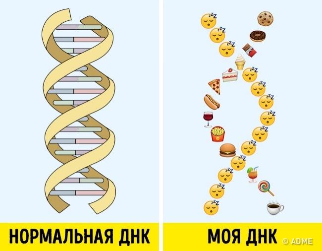 16 доказательств, что ДНК устроена не совсем так, как нам рассказывали в школе