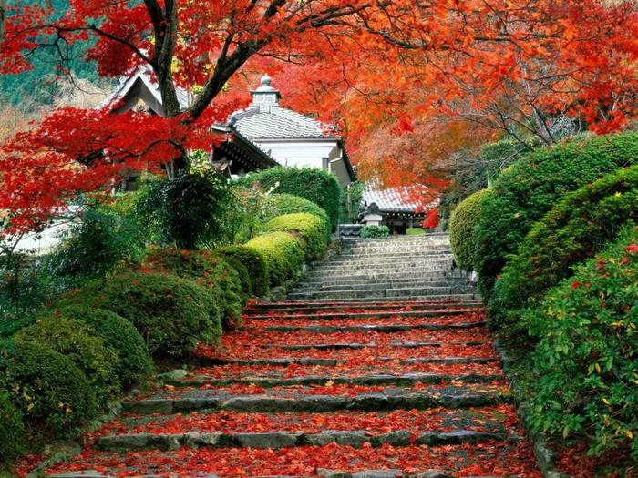 Фотопутешествие по Японии.