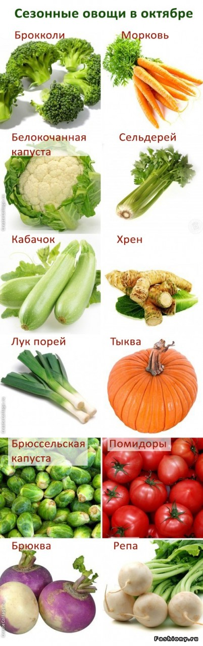Список сезонных продуктов с октября по декабрь: овощи, фрукты и грибы