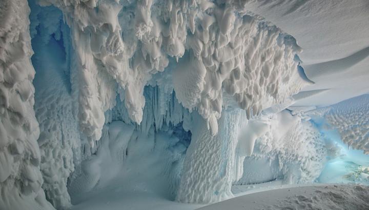 Австралийские учёные заявили, что в теплых пещерах под ледниками Антарктиды процветает жизнь