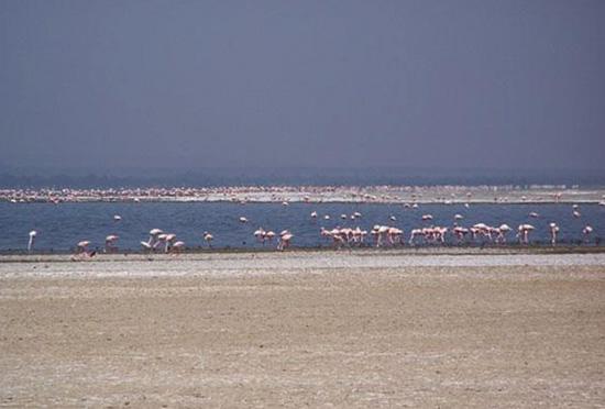 Озеро Абаята