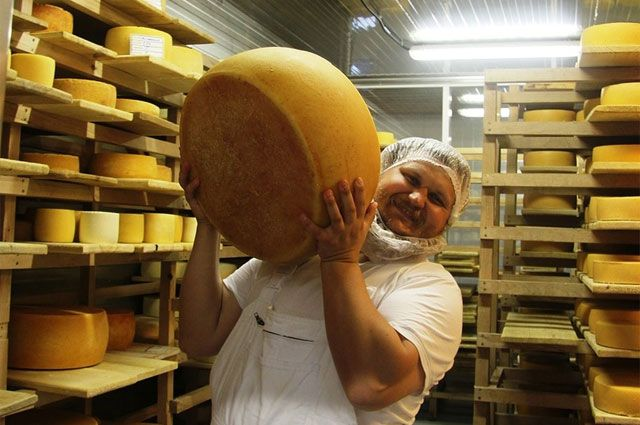 Российский фермер Олег Сирота — о стартапах, сыроварении и пользе от эмбарго для развития отечественного продукта