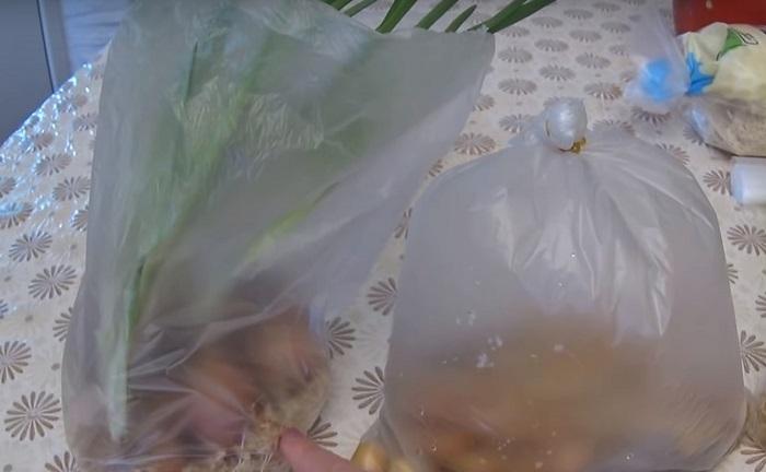 как выращивать лук из луковицы
