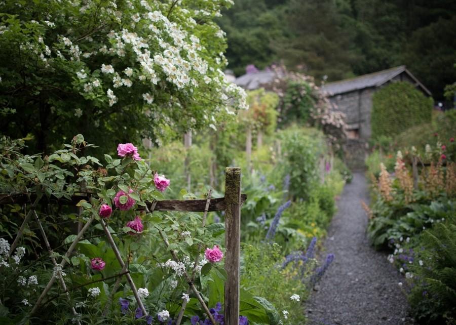 Сад сельский, деревенский. Как его создать и что в нем посадить?
