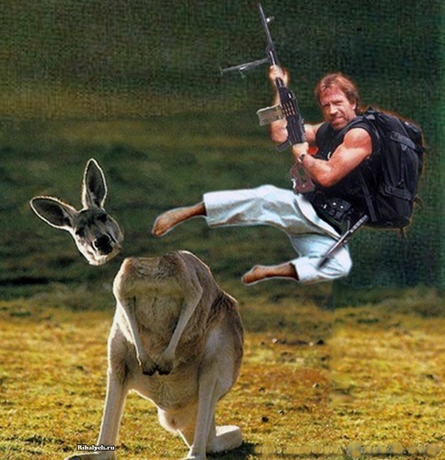 Двухметровый-кенгуру гопник.…