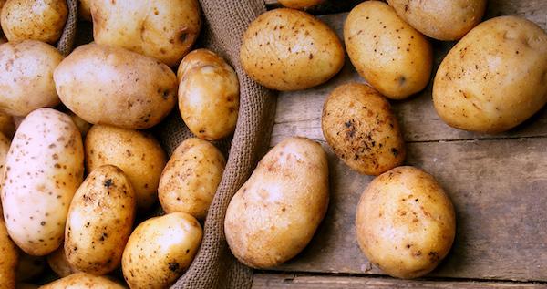 Вот как выращивают картошку …