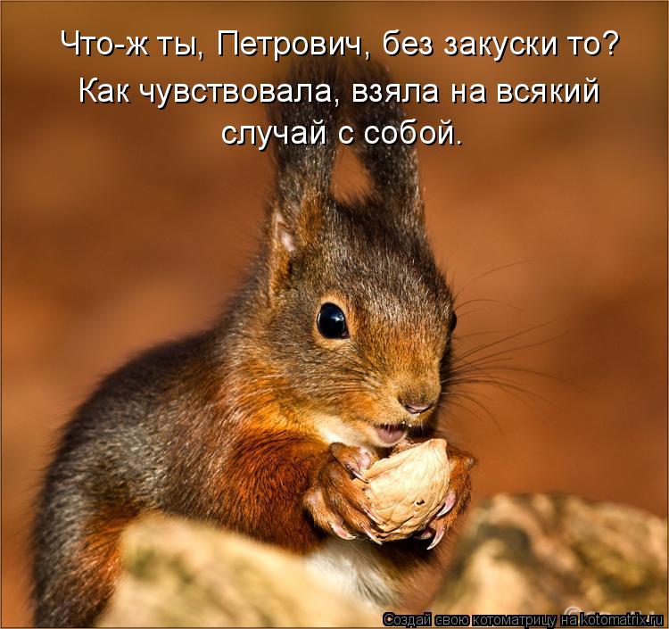 Котоматрица: Что-ж ты, Петрович, без закуски то?  Как чувствовала, взяла на всякий  случай с собой.