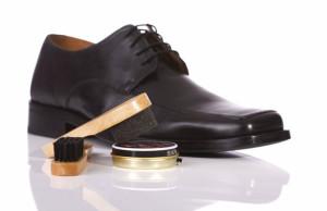 Виды средств для обуви – в к…