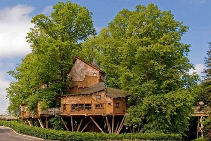 Алникский дом на дереве.