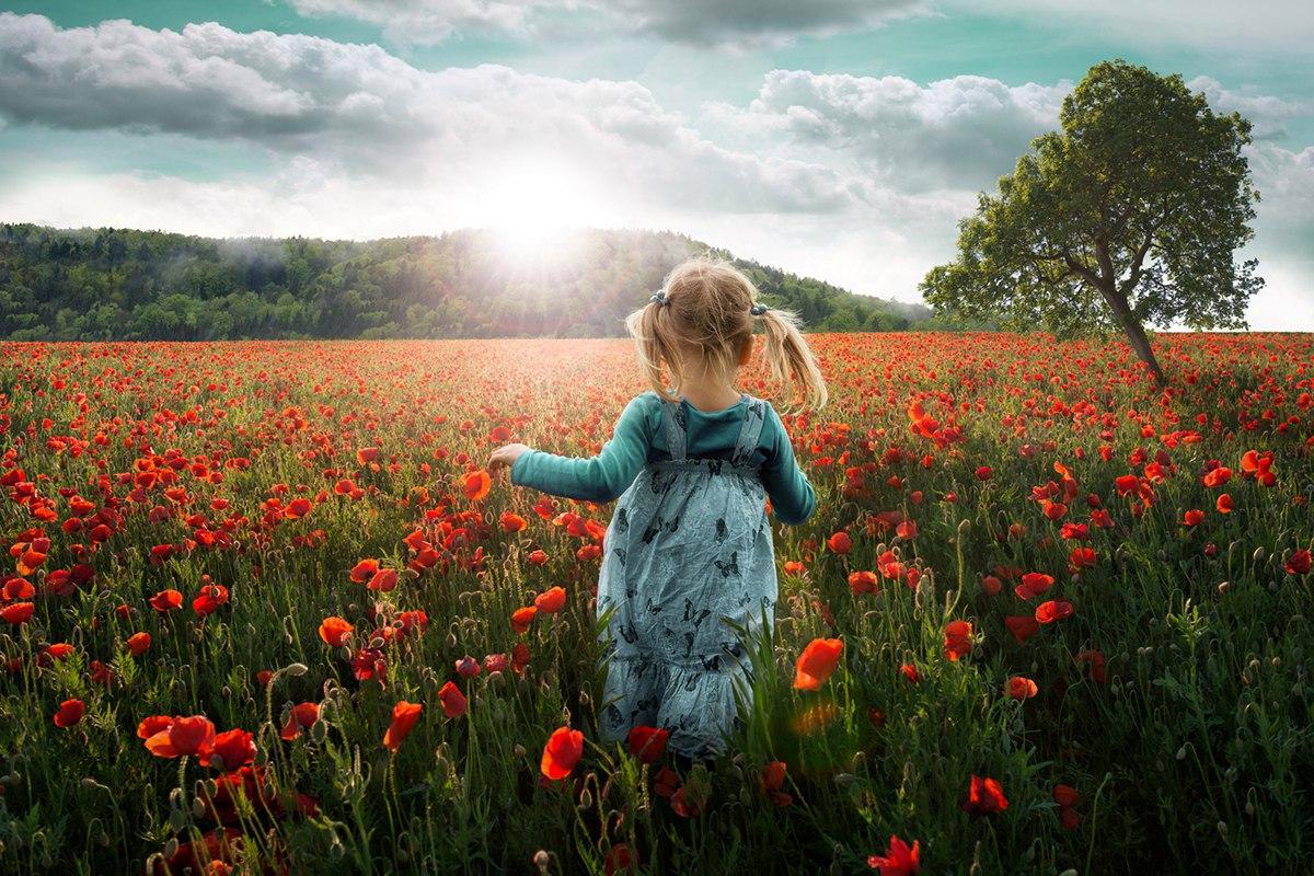 Счастливые дети: что посеем, то и пожнем