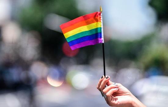 Роль LGBT MPA в индустрии туризма