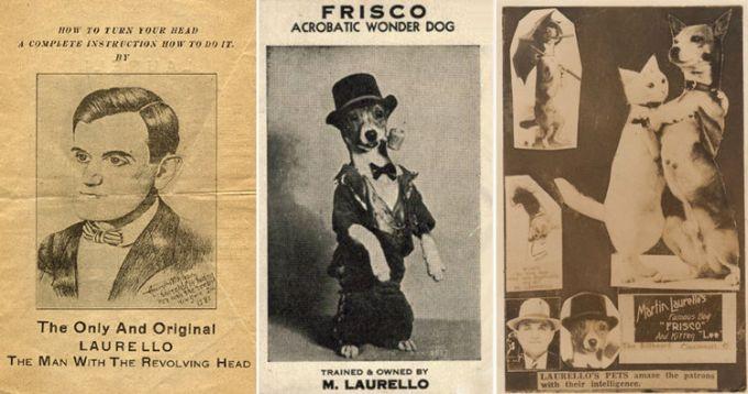 Мартин Лаурелло – знаменитый Человек-сова